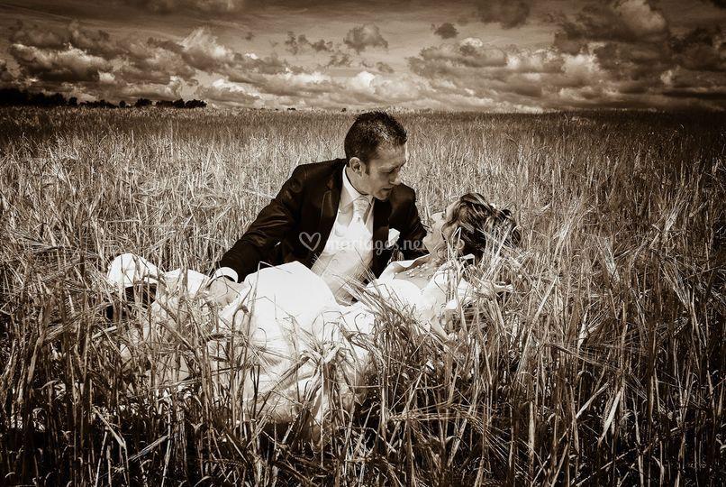 Mariés dans les blés