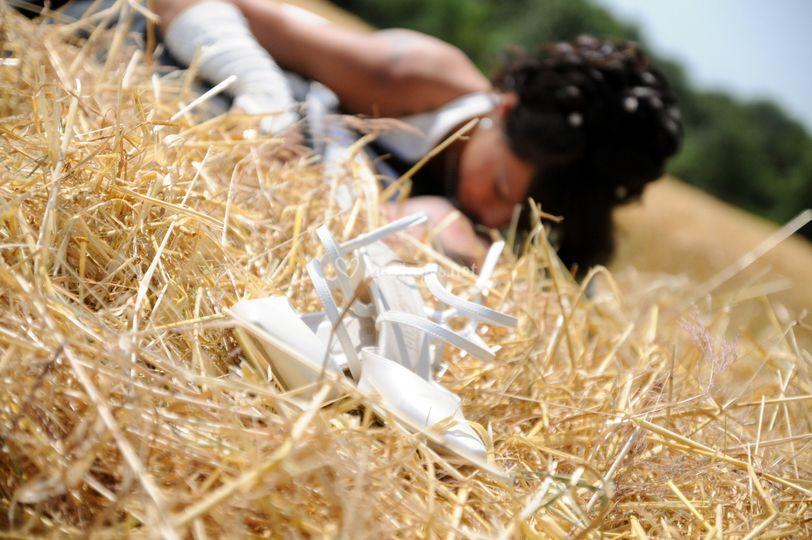 La mariée dans les champs