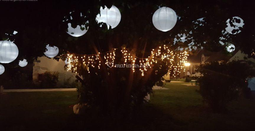 Lanternes dans le jardin