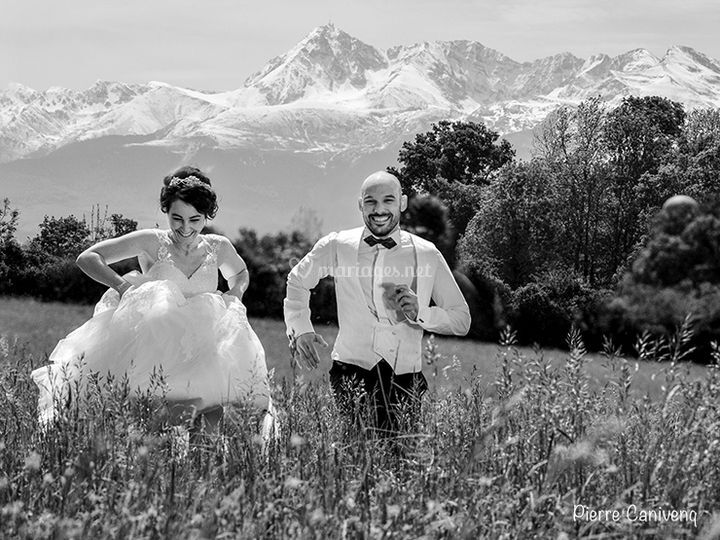 Pyrennees, Ger, french weeding