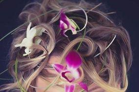 Carolanne coiffure