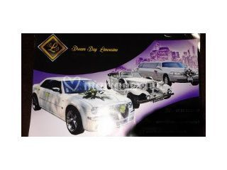 Logo Dream Day Limousine