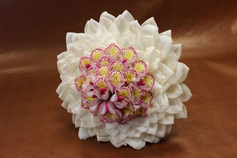 Amamelis Fleurs