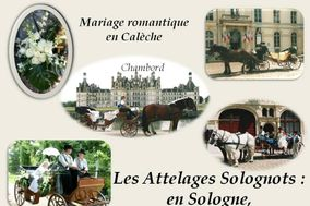 Attelages Solognots