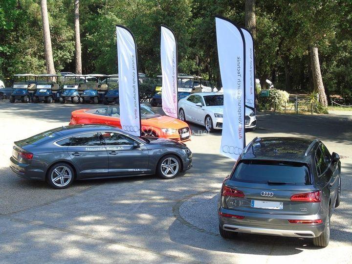 Audi au Golf