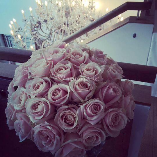 Thème Rose absolue
