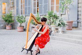 Blue poppy harpe