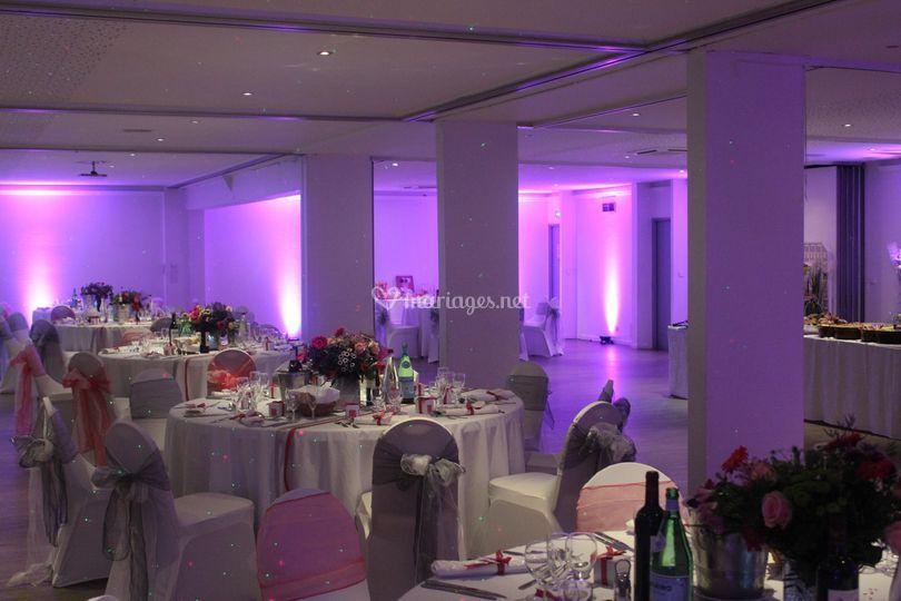 Décoration pars led violet
