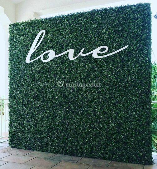 Mur végétal buis