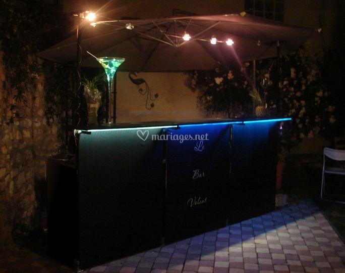 Le bar dans un jardin privé