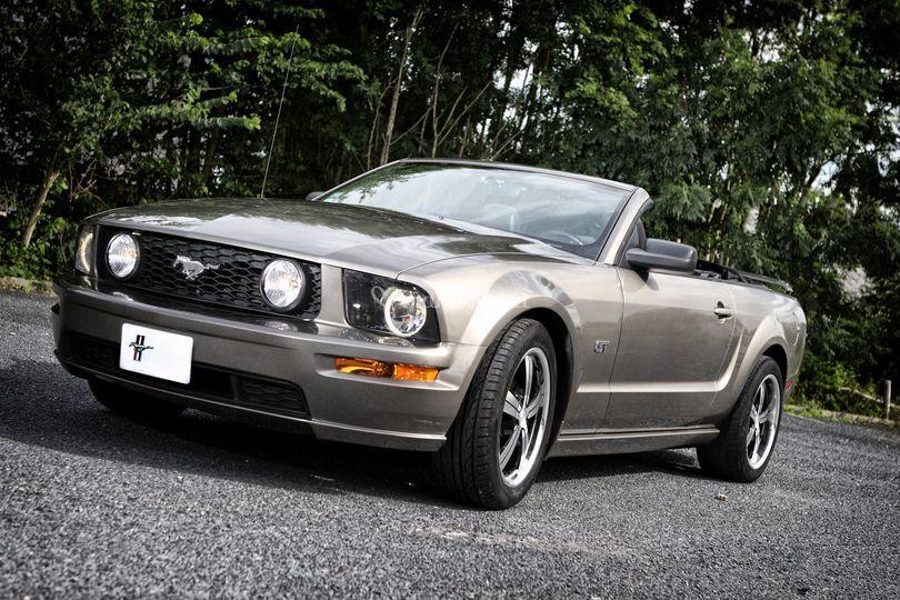 Location Mustang Yvetot