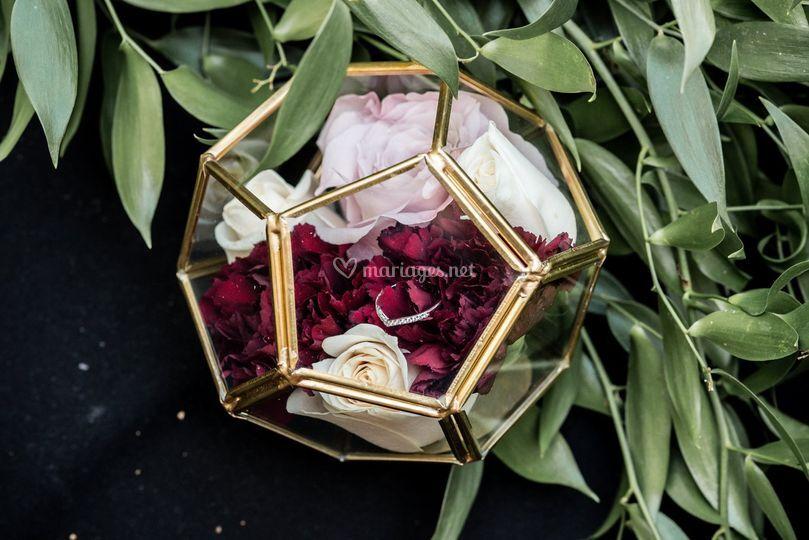 Alliance - terrarium fleuri