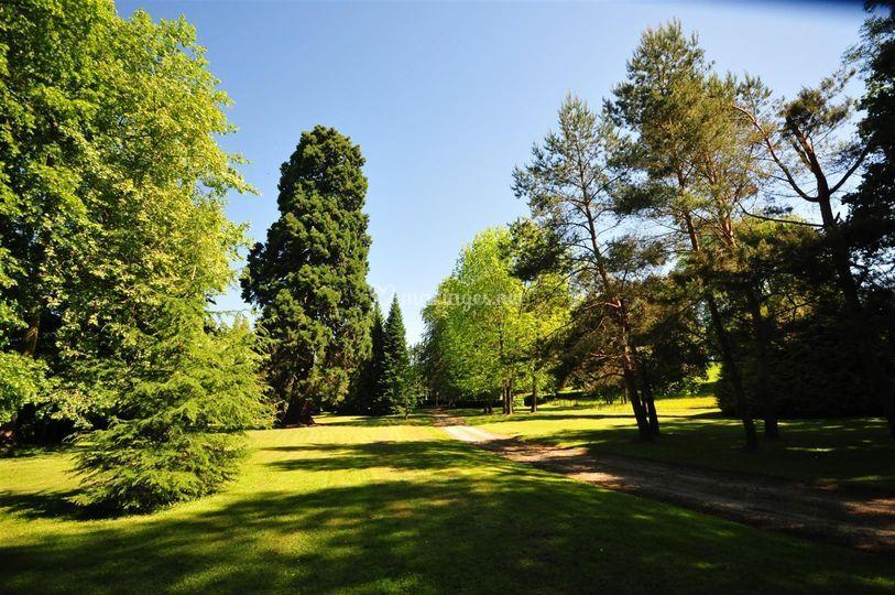 Parc arboré 12 hectares