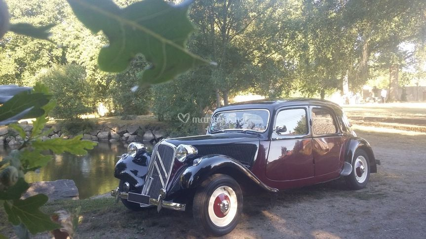 Location Citroën 1954