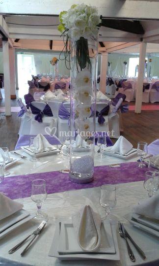 Blanc/violet