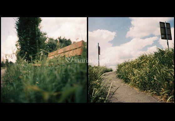 Photo d'illustration - chemin verts