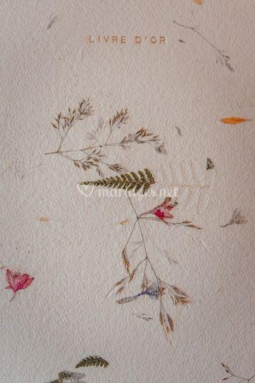 Livre d'or à pétales de fleurs