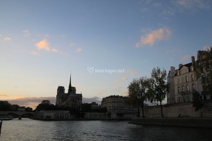Notre Dame in sunset