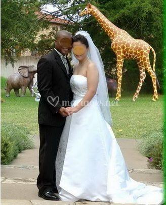 Mariage afrique thème