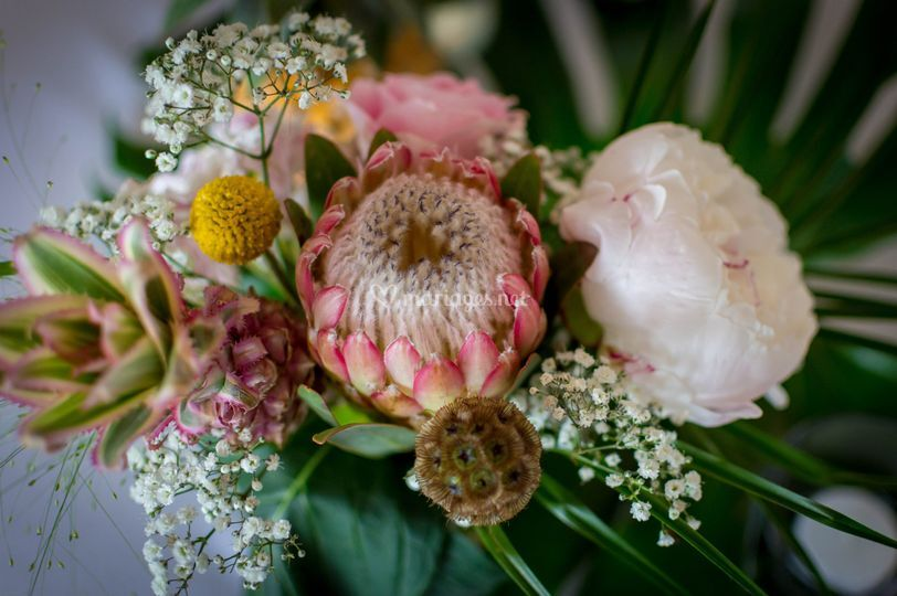 Clayton's Flowers
