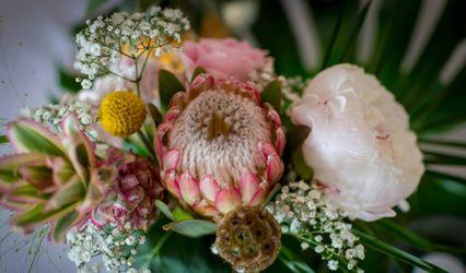 Clayton's Flowers 1
