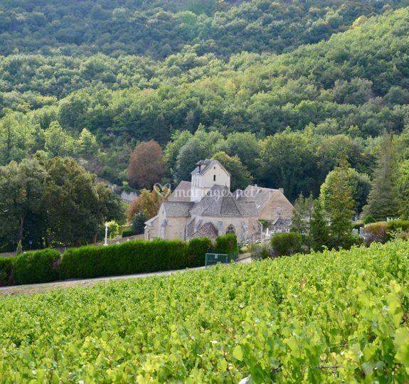 Vigne de Santenay