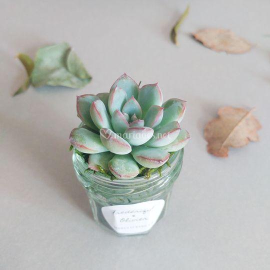 Le Petit Pot à Confiture