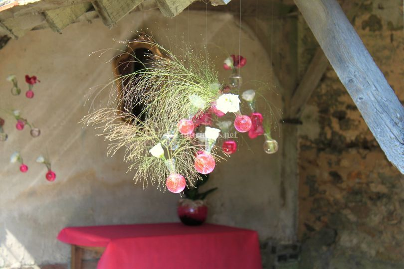 Suspensions lisianthus, gramin
