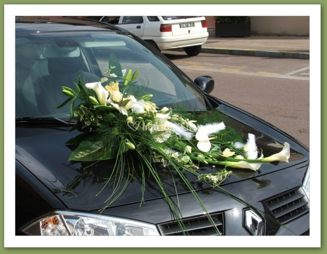 Decor voiture