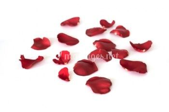 des p tales de rose pour la sortie de l glise