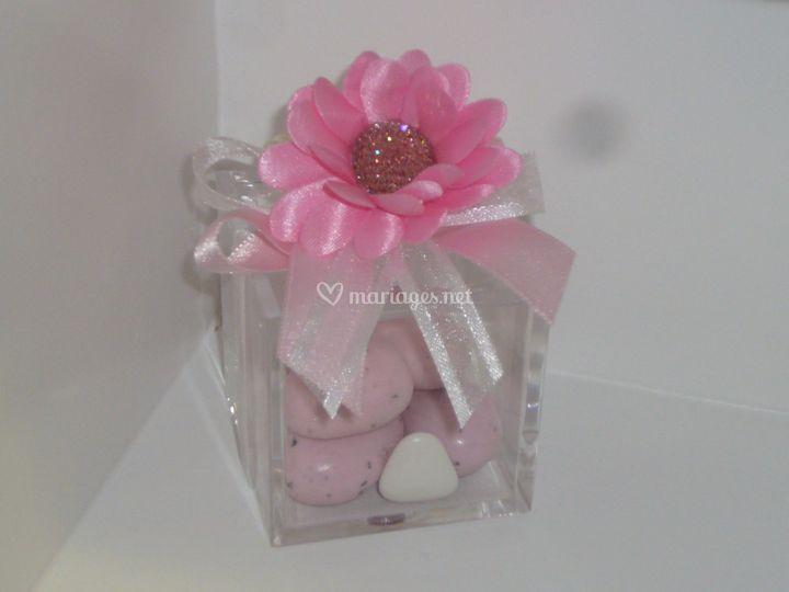 Cube marguerite rose tendresse