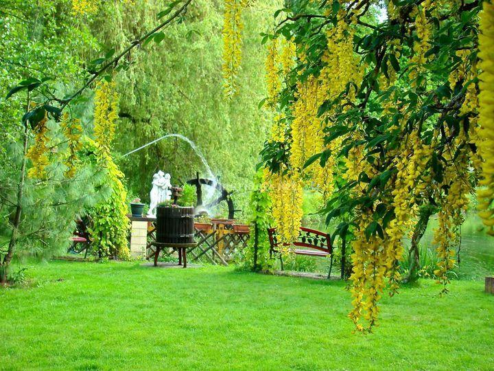 Le chalet des aulnes for Chalet de jardin bretagne