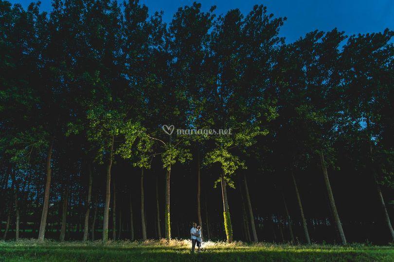 Séance engagement forêt de nui