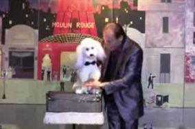 Frank Wells Et Handy - Ventriloquie