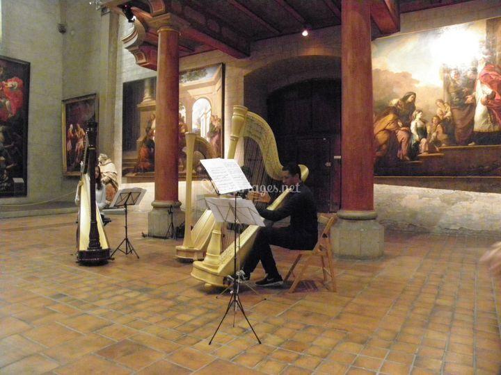 HarpeSam