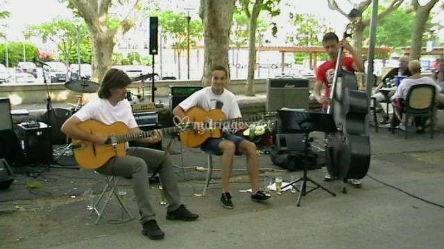 Will Trio