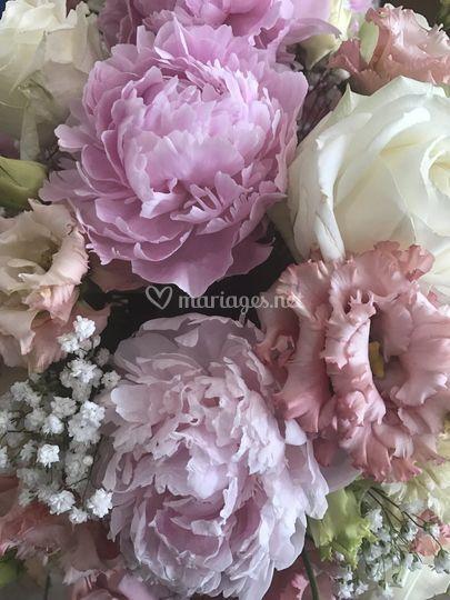 Pivoine et roses anglaises