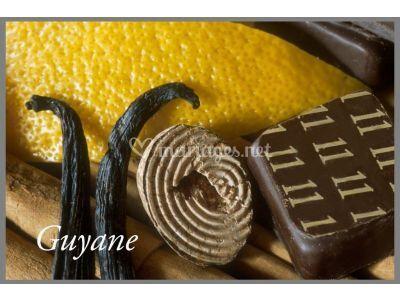 N° 11 Guyane