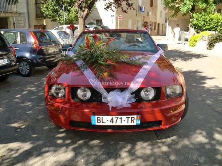 GT 2005
