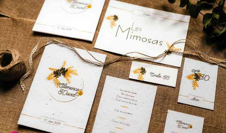 Thème floral : Mimosa