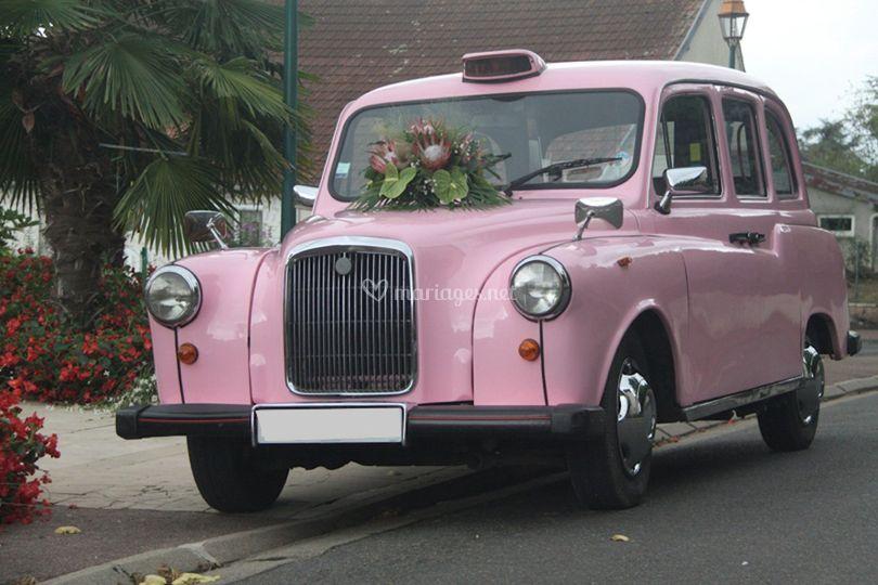 Taxi rose