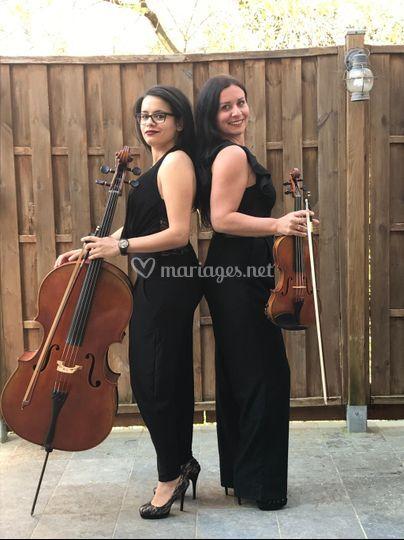 Violon violoncelle