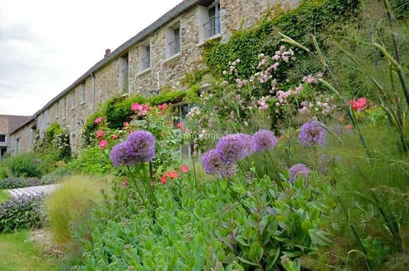 Fleurs champêtres et Maison