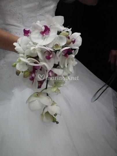 Bouquet phalaénopsis
