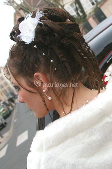 Plumes et bijoux cheveux