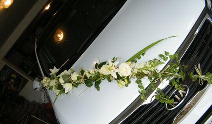 Amaëli Fleurs 1