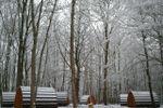 Pod en hiver