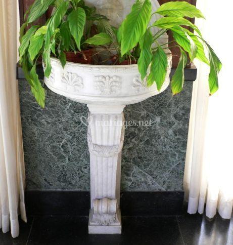 Vasque en pierre et ses plantes vertes
