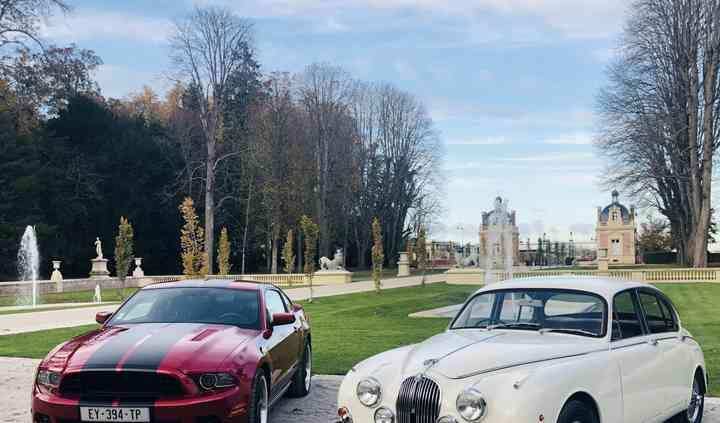 Mustang Jaguar
