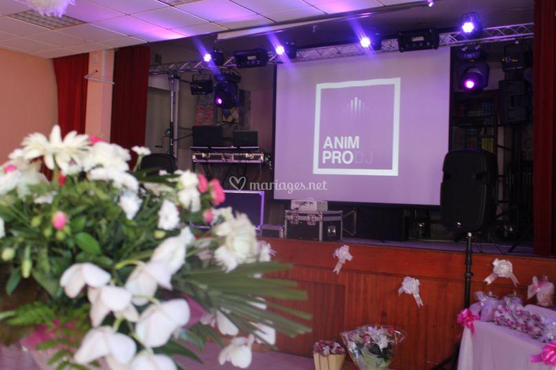 Anim Pro DJ